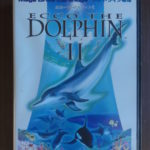 Ecco The Dolphin Ii (1) Front