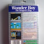 Wonder Boy The Dragon's Trap (2)