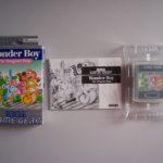 Wonder Boy The Dragon's Trap (3)